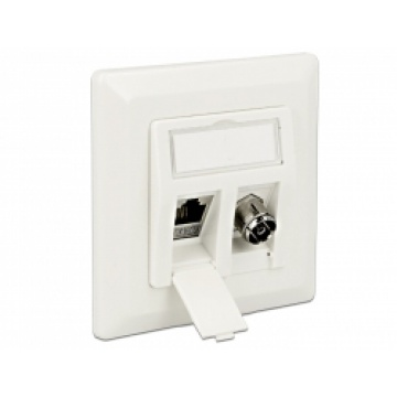 Delock Keystone Wall Outlet 2 port
